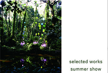 selected works: summer show