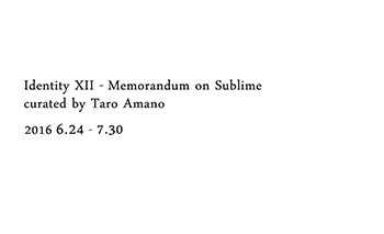 Identity XII - Memorandum on Sublime -curated by Taro Amano-